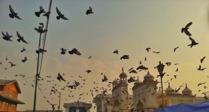 Hazrat Bal shrine