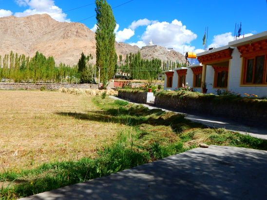 Our homestay in Leh